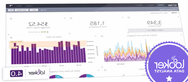 Which business intelligence tools or systems have you worked with?