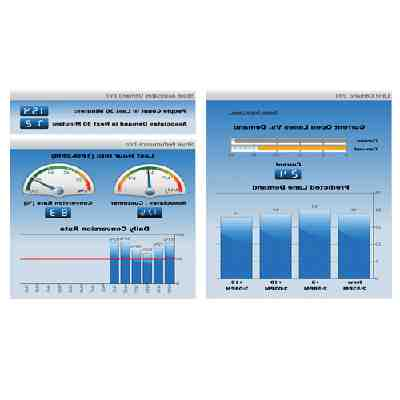 Which software model is business intelligence systems