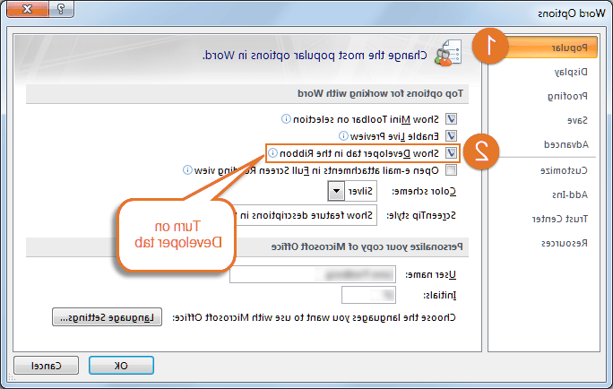 How do I add the Developer tab in Word 2003?