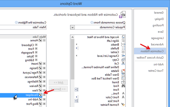 How do I get the Developer tab in Word 2007?