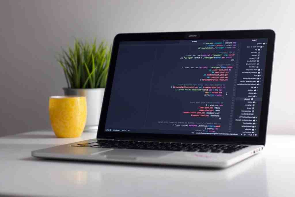 What are the minimum requirements to be a software developer?