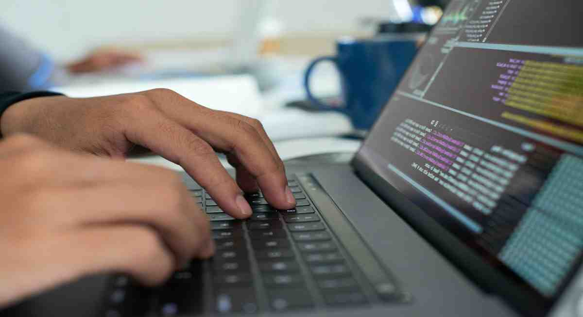 What does a software developer do