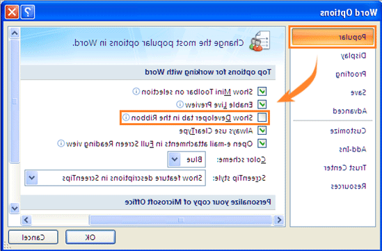 What is a Developer tab in Word?