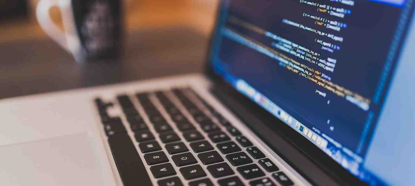 What is difference between programmers and developer?
